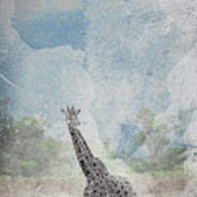 The African Giraffe Poster by Mary Lee Dereske