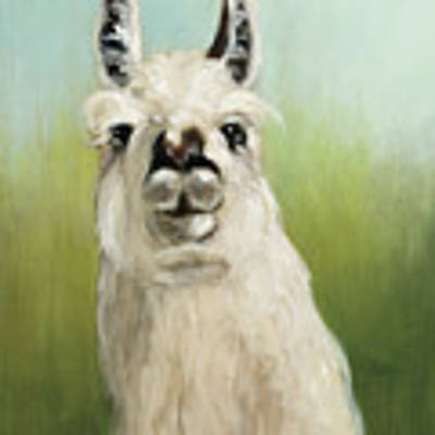 Whos Your Llama I Poster by Julia Purinton