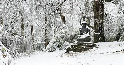 Designs Similar to Snow Buddha Batsford Arboretum
