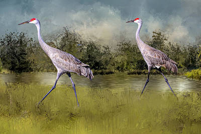 Designs Similar to Sandhills In A Hurry