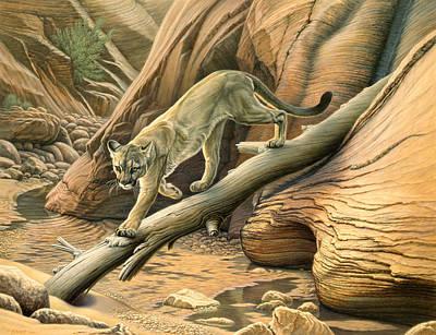 Designs Similar to Canyon Hunter -  Cougar