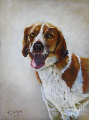 Painting - Benson by Heather Harman