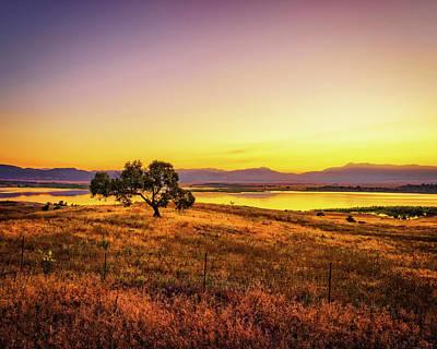 Photograph - Gorgeous Field by Nazeem Sheik