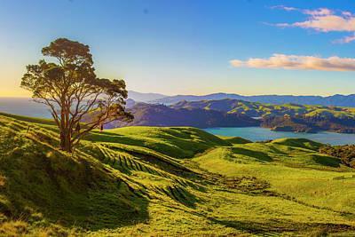 Photograph - Cormundel Peninsula by Jeff Pfaller