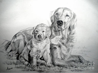 Drawing - Goldie and pup by Heather Harman