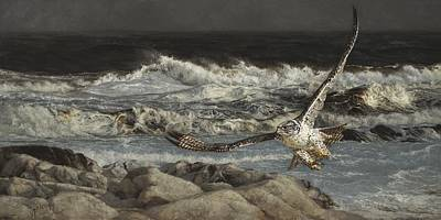 Falcon Paintings