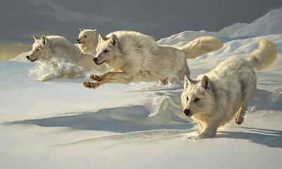 Arctic Wolf Art