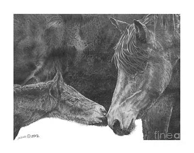 Mare And Foal Pencil Drawing Drawings