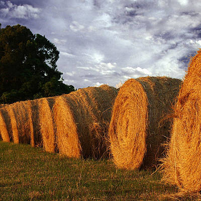 Designs Similar to Hay Bales  by Keith Gondron