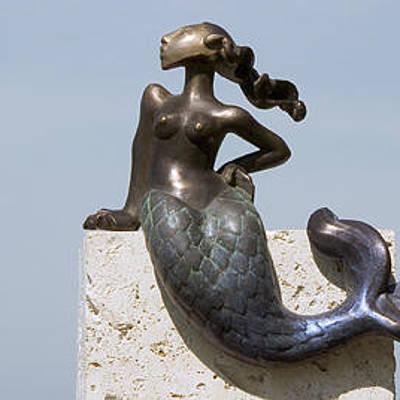 Designs Similar to The Littlest Mermaid