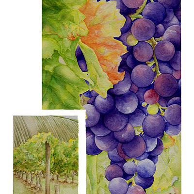 Designs Similar to Vineyard4 by TR O'Dell