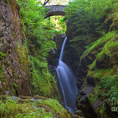 Designs Similar to Aira Force by Pete Reynolds