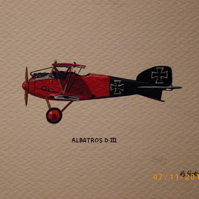 Designs Similar to Albatross D3 by Keith Hutchins