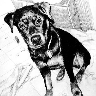 Designs Similar to Black And Tan Dog