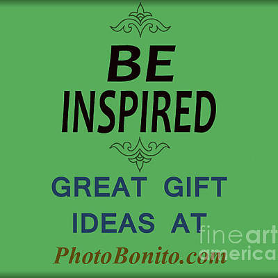 Inspiration Photographs