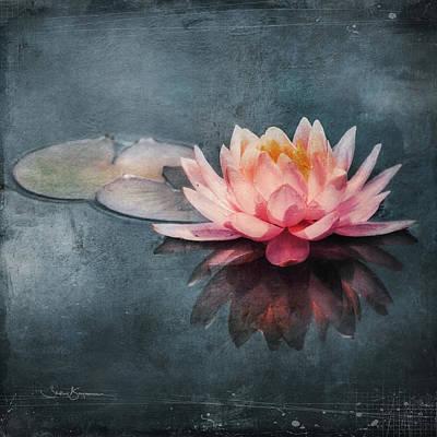 Digital Art - Lily Reflection by Shelley Benjamin