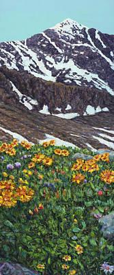 Designs Similar to Torrey's Peak In Spring