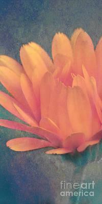 Texture Flower Mixed Media Prints