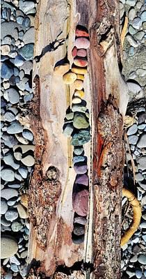 Photograph - Nature's Palette by Eliaichi Kimaro