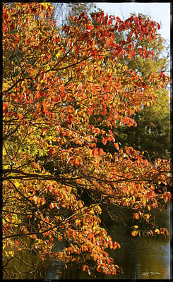 Designs Similar to Autumn Colors In Pa