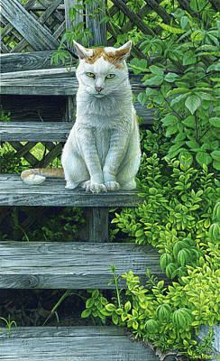 Angry Kittens Original Artwork