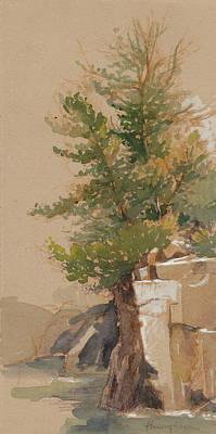 Saint Croix Paintings