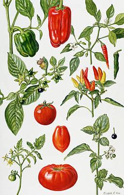Huckleberry Paintings Prints