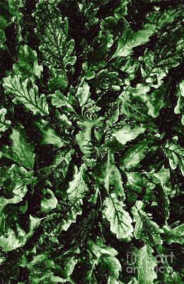 Greenman Art