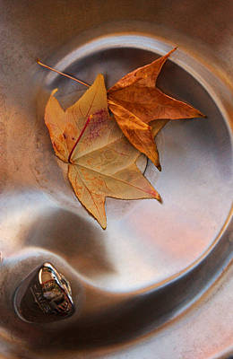 Abstract Water And Fall Leaves Prints