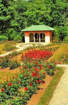 Designs Similar to Rose Garden by Linda Covino