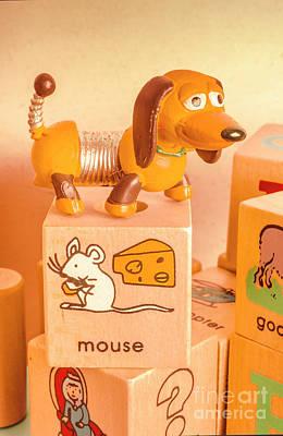Designs Similar to Playtime Pets