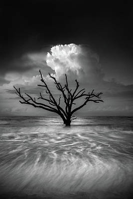 High Tide Photographs