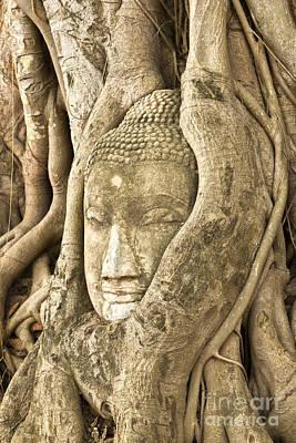 Ayutthaya Photographs