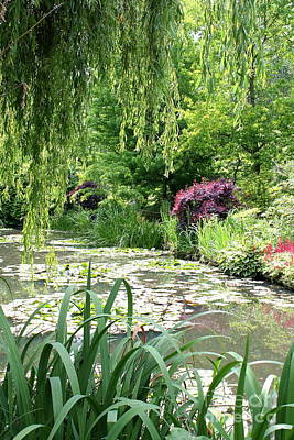 Designs Similar to Monets Waterlily Pond