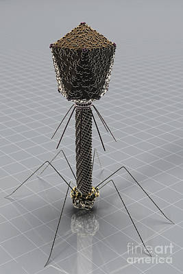 Designs Similar to Bacteriophage