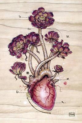 Aeonium Art