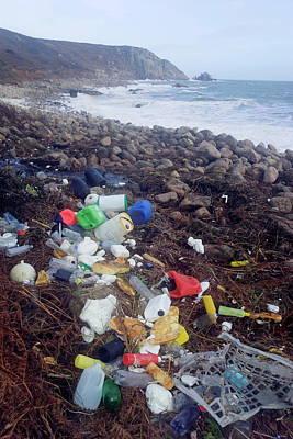 Designs Similar to Beach Litter