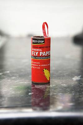 Designs Similar to Flypaper Container