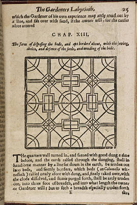 Didymus Prints