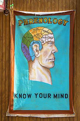 Neuroanatomy Prints