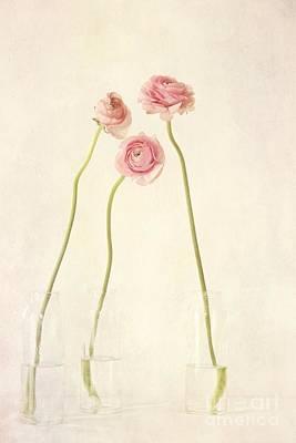 Floral Still Life Digital Art Prints