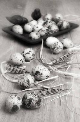 Designs Similar to Speckled Quail Eggs