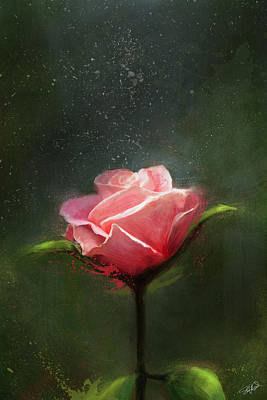 Rose Garden Digital Art