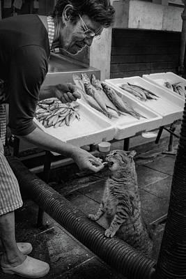 Hunger Photographs