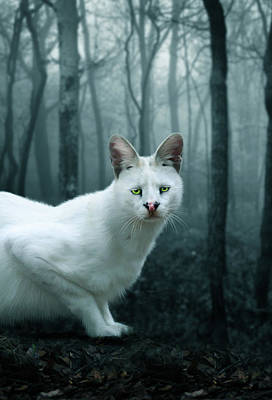 White Serval Digital Art