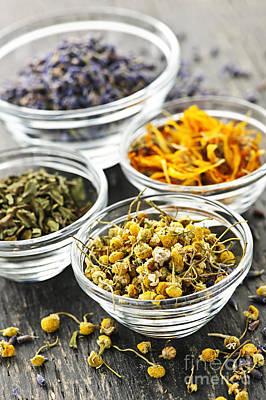 Designs Similar to Dried Medicinal Herbs