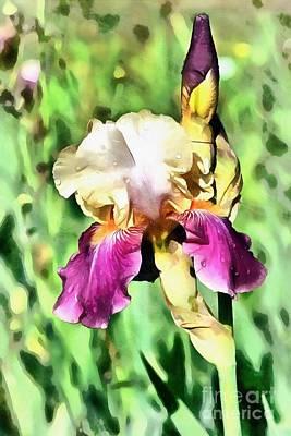 Designs Similar to Iris Flower
