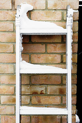 Designs Similar to Snow On A Ladder 1
