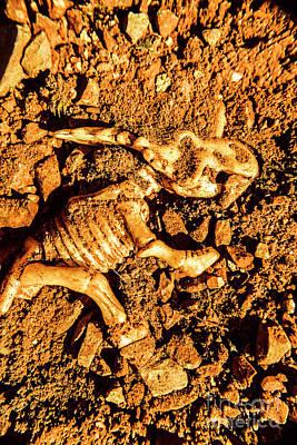 Extinct Photographs