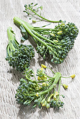 Designs Similar to Broccoli Florets